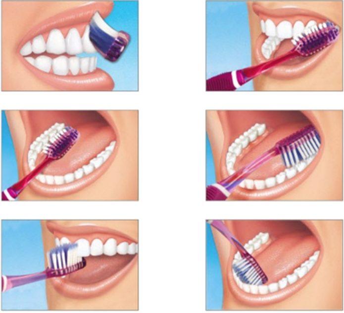 Istruzioni per lavarsi i denti